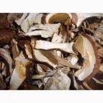 Продам сухие грибы из Закарпаття