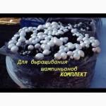 Набор для выращивания грибов, шампиньоны