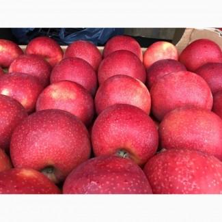 Яблуко з холодильника