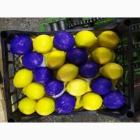 Лимон оптом