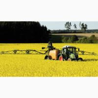 Купим пшеницу крупным оптом по Украине