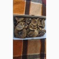 Коробка ПАНТЕРНЫХ сушёных грибов