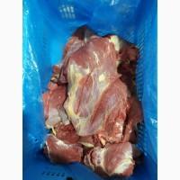 Продам яловичину в асортименті