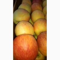 Продам яблоко 1 та 2 сорту, гарно зберігається