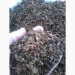 Продам ферментированный табак