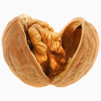 ПРОДАМ грецкий орех кругляк бойный