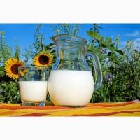 Продаю молоко 1го гатунку від 200л за добу