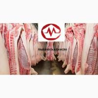 Мясо Свинины Для Мясокомбинатов