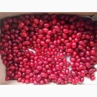 Кізіл шокової заморозки ягода