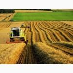 Купим сельхозпредприятие, колхоз, агрофирму c землей в обработке
