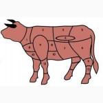Купуємо вибраковку корів/бичків на забій