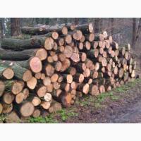 Продаю дрова, метровий кругляк, колоті, торфобрикет Луцьк низькі ціни