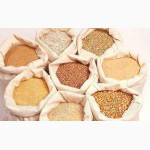 Услуги по переработке, очистки и сушки зерна, ягод, фруктов и овощей