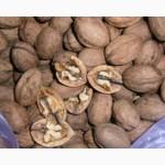 Продам орехи на бой