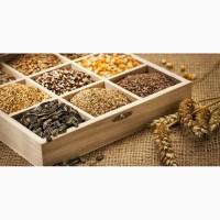 Посевной материал (подсолнечник, кукуруза, ярый ячмень и т.д)