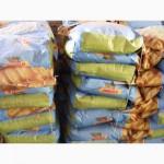 Семена кукурузы ДК 440 (Monsanto)