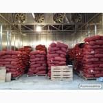 Продам грецкий орех кругляк на постоянной основе работаем круглый год