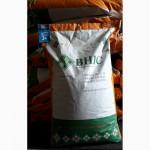 Продам семена подсолнечника Українське сонечко ВНІС