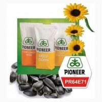 Семена подсолнечника Пионер PR64E71 Распродажа 2016 года урожая, Одесская обл