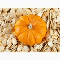Закуповуємо на постійній основі гарбузове насіння всіх сортів