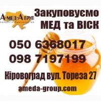 Закупівля меду оптом від 300 кг