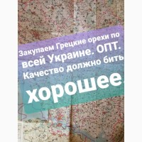Закупаем со всей Украины Грецкий Орех урожая 2020 года