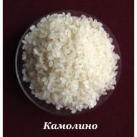Рис круглый Камолино