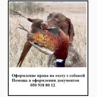 Документы на право охоты с собакой