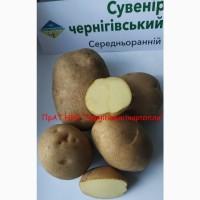 Картопля насіннева еліта від виробника, продаж посадкової картоплі