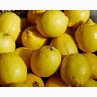 Продам лимоны Турция Мерсин