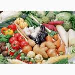 Планриз -биофунгицид против грибковых заболеваний растений