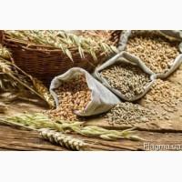 Продам посевной материал, мин удобрения, средства защиты растений