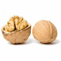 Грецкий орех в скорлупе куплю