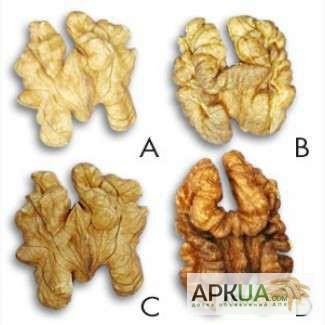 Продам грецкий орех чищенный светлую бабочку по 145 грн/кг