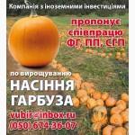 Продаём посевной материал голосемянной тыквы Сорт Gleisdorfer