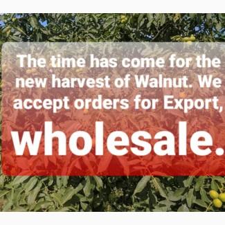 Nuts all Ukraine принимаем заказы на ядро Грецкого ореха. Урожая 2020г. Ждем звонков