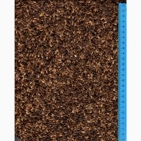 Розторопша / расторопша / Milk thistle seeds / Sylibum marianum