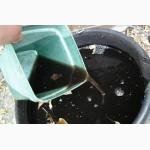 Жидкая вытяжка из биогумуса от производителя