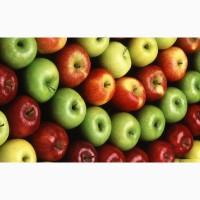 Продаємо яблука. В наявності різні сорти, у великій кількості