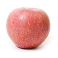 Продам яблоки сорта Фуджи. Опт