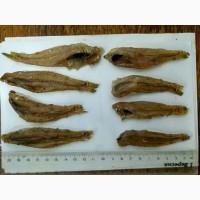 Бычок азовский вяленый/сухой, рыба, рыбпродукты