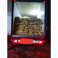 Продам грецкий орех 23 тонны