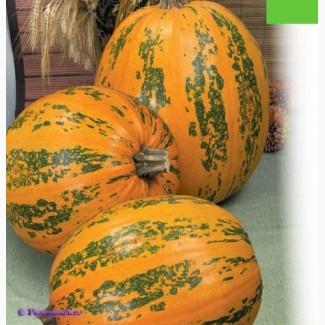 Семена тыквы Данка Полька 250грн /кг