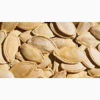 ПРОДАМ ТЫКВЕННУЮ СЕМЕЧКУ гарбузове насіння