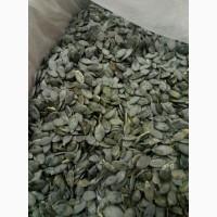 Куплю насіння голонасінного гарбуза