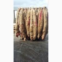 Поставляем сырье из Испании- шкуры мериносовых овец