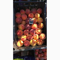 Продам персик : Коллинз, Кардинал