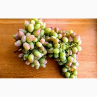 Продам виноград 4-х сортов