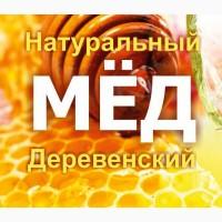 Покупаем мед оптом по хорошей цене