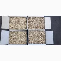 Продам чищеный грецкий орех 2020 года